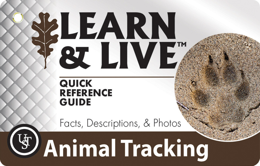 UST Learn & Live Cards - Animal Tracking