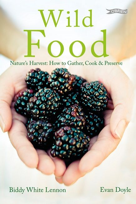 Wild Food a book for Nature's Harvest